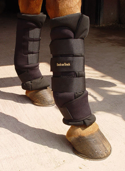 Bandager & Belegg